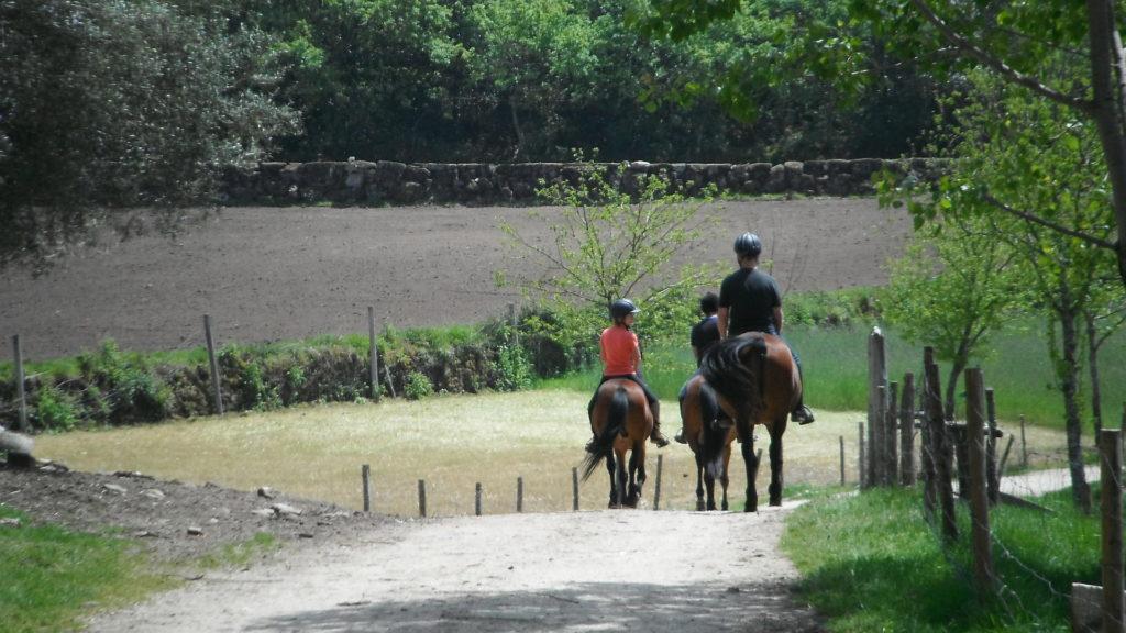 Paardrijden onder leiding van een portugese gids, activiteiten