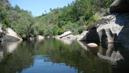 Puur-natuur-rivier