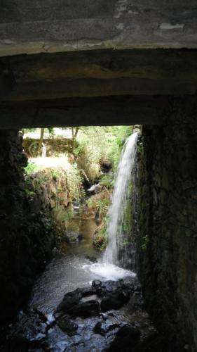 waterkracht-molen