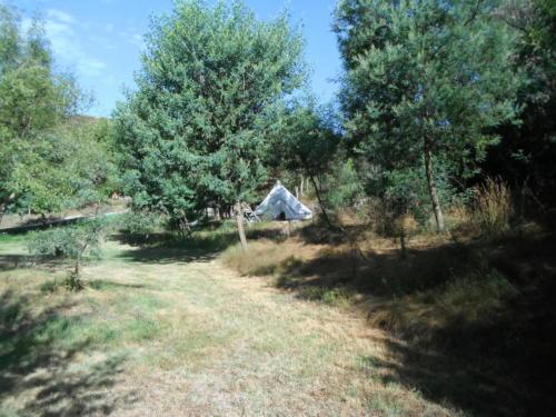 camping-natuur